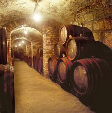 Barriles de vino en una bodega